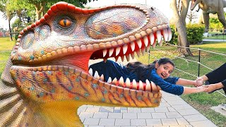 Shafa play in Dinosaur Park