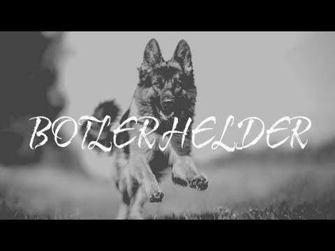 BOTLER HELDER _ DANDY BARAKATI Ft AYEN M Ft ANDYROES ( VIDEO LIRIK )