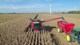 Bernia Family Farms, Inc Corn Harvest 2016