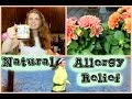Natural Tips & Tricks for Allergy Relief
