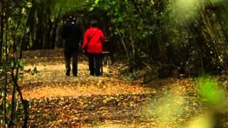 Nueva canción de Benito Lertxundi dedicada a Txingudi