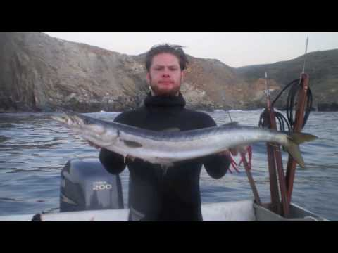 Personal Bests of 2009-Spearfishing Southern California, Nevada, and Arizona