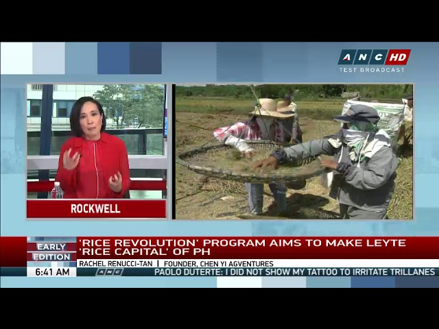 French couple's 'Rice Revolution' program boosts yields in Leyte