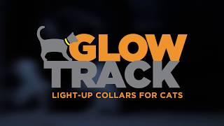 Cat tracking Collar w/ GPS and camera option