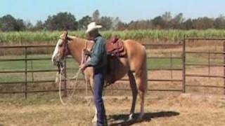 The Use of Mecate Reins & Slobber Straps for Horses, provided by eXtension
