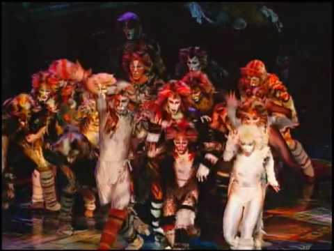 CATS The Musical - National Tour!