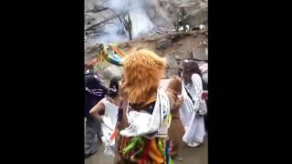 Danza los tigres del milenio