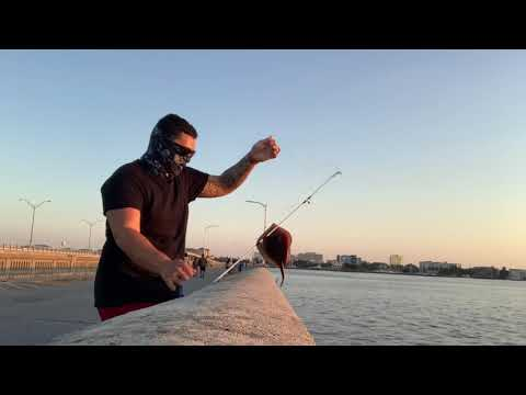 Fishing In Bradenton Florida (Pier Fishing)