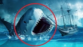 5 Terrifying MEGALODON ENCOUNTERS