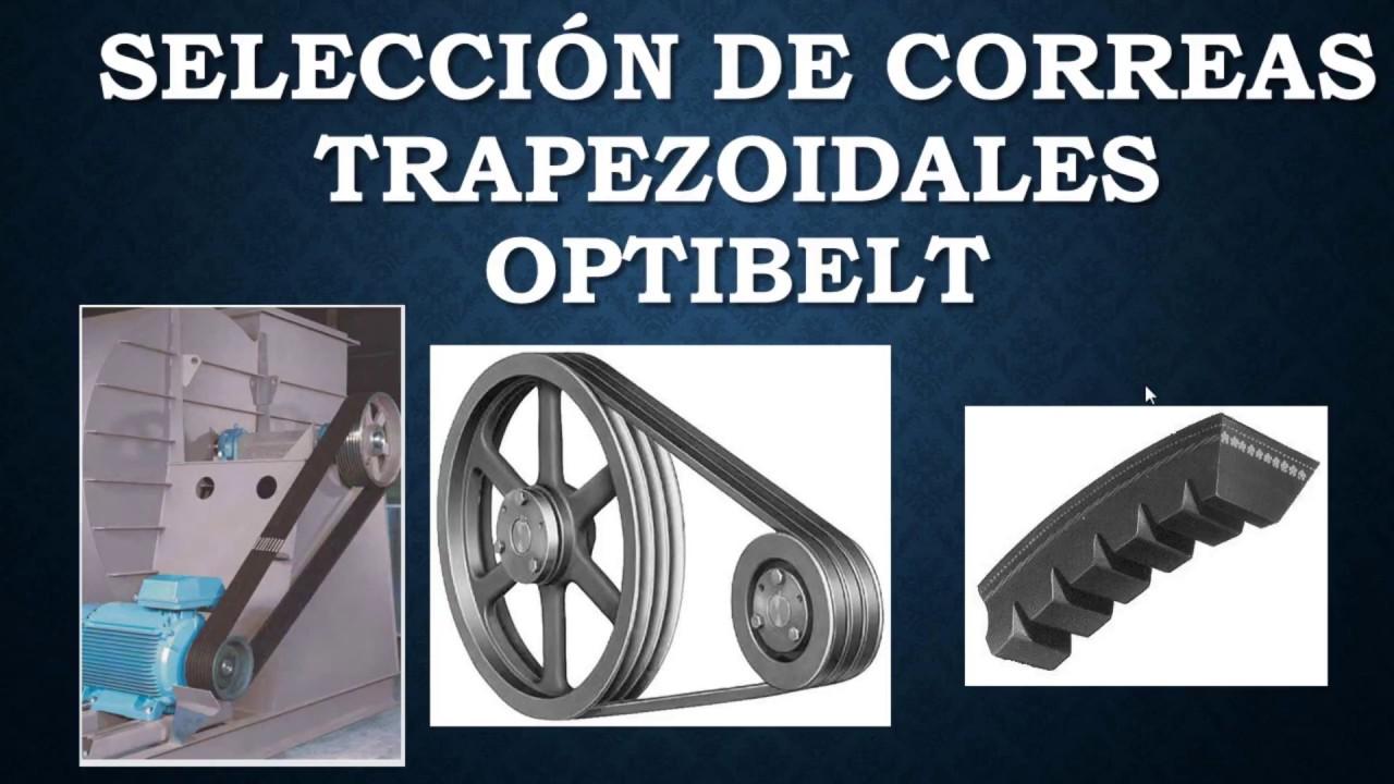 Kettler by bulktex ® correas de transmisión correa correas trapezoidales para escaladoras ctr3 CTR 3