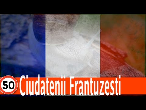Top 50 Ciudatenii Frantuzesti