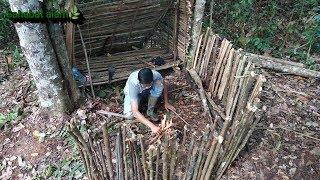 Shelter Buat Tempat Berteduh di Hutan Hujan Tropis