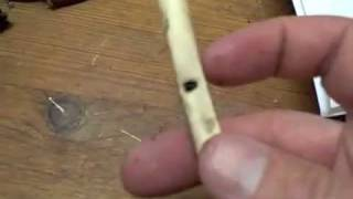 Make A Bird Bone Whistle