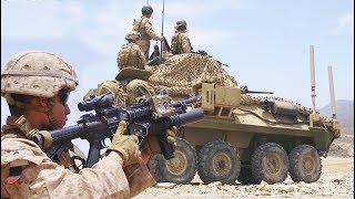 USMC Light Armored Recon Marines in action: LAV-25 (26th MEU overseas deployment)
