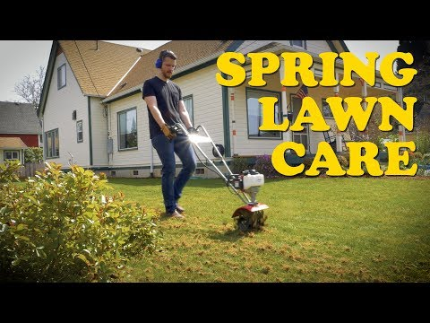 Best Yard in Town! Spring Lawn Care   Dethatching, Aeration, Overseeding, Fertilizing
