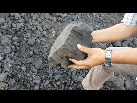Coal Kalimantang Tengah Low Sulphur