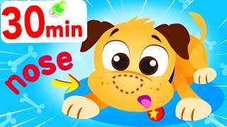 Where Is My Nose? 🐶 |  Puppy Lost His Nose | My Pet Buddy BINGO! Animal Songs by Little Angel