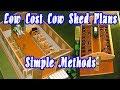 Low cost cow farm shed desings |Simple farm designs