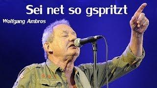 Wolfgang Ambros - Sei ned so gspritzt (Lyrics) | Musik aus Österreich mit Text