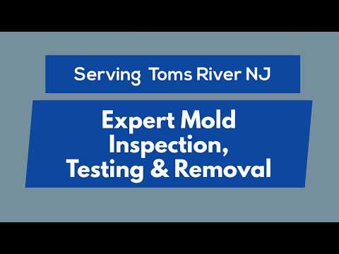 toms-river-nj-mold-inspection,-testing-&-removal