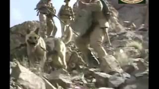 33 годовщина с начала Афганской войны.