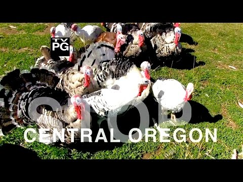 Next Stop: Central Oregon - Agri-Culinary Tourism