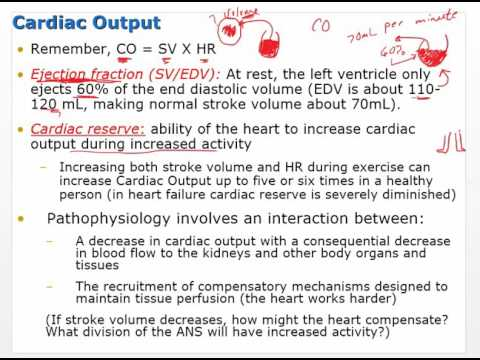 Chapter 20 Video   Heart Failure and Circulatory Shock