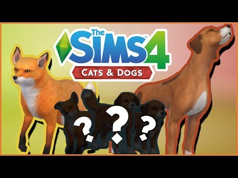 What If The Fox & The Hound Had Puppies?! 🐱🐶 Sims 4: Cats & Dogs