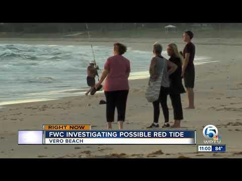 FWC investigates possible red tide in Vero Beach
