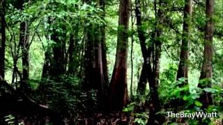 "WWE: The Wyatt Family Full Titantron 4th Theme ""Live In Fear"" (HD)"
