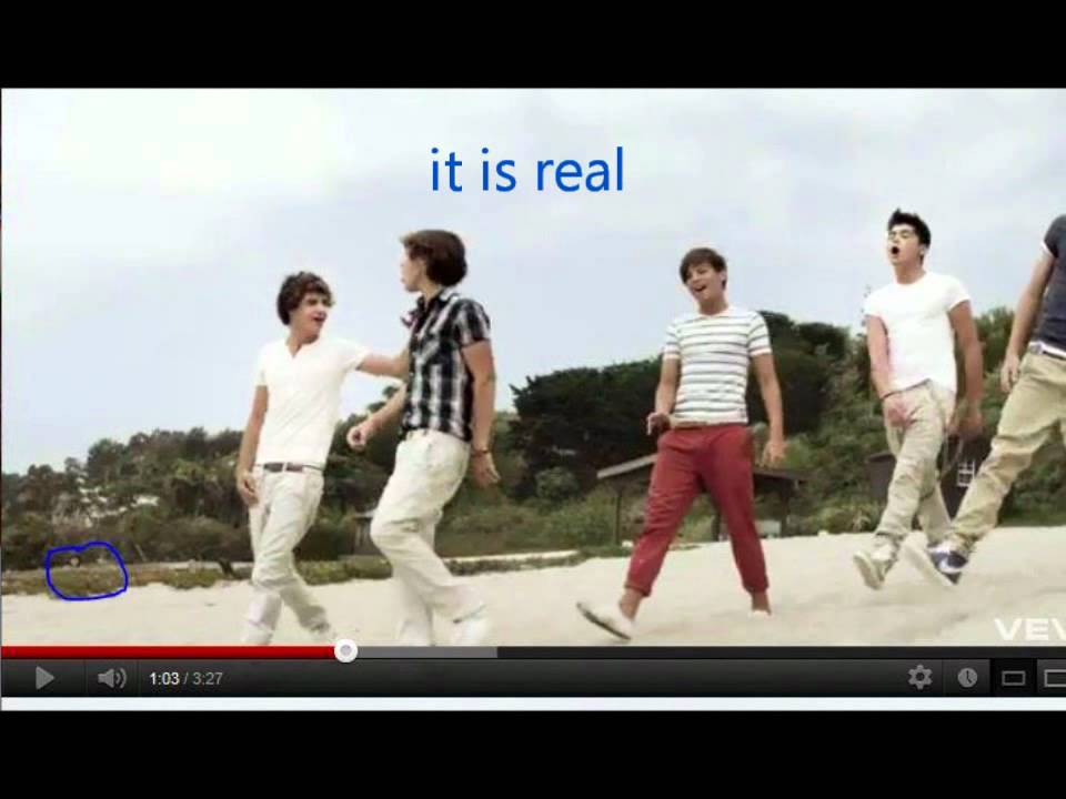 Ghost caught in one direction what makes you beautiful for What make a beautiful