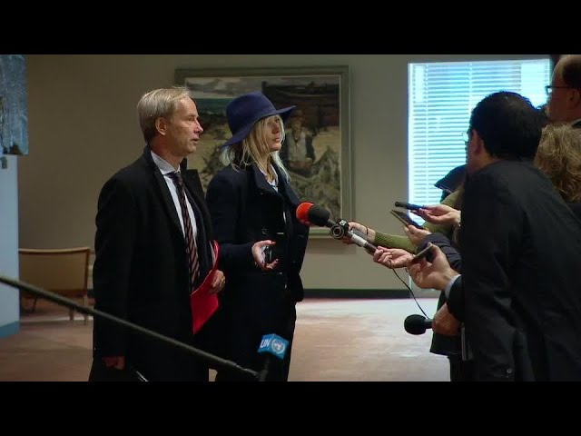 Sweden on the humanitarian situation in Syria - Security Council Media Stakeout (29 November 2018)