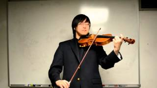 perfect violin cover