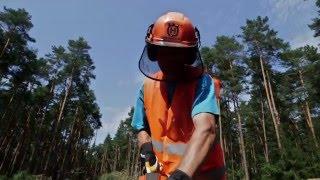 Zawód: operator maszyn leśnych