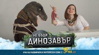 Динозавър T-Rex се излага в ТВ шоу