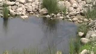 Contaminated Creek in Bakken Oil Fields, North Dakota