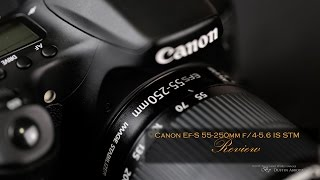 Canon EF-S 55-250mm f 4-5 6 IS STM Review - Budget Excellence