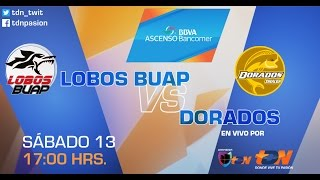 Lobos Buap Vs Dorados Final Ida En Vivo