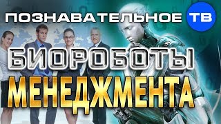 Биороботы менеджмента (Познавательное ТВ, Андрей Иванов)
