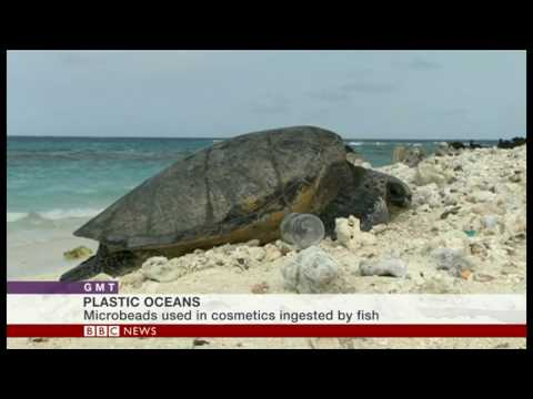 Benjamin Jones speaks on BBC World News about marine litter