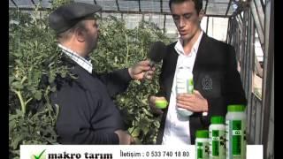 MAKRO TARIM KÖY TV'DE Green Bull