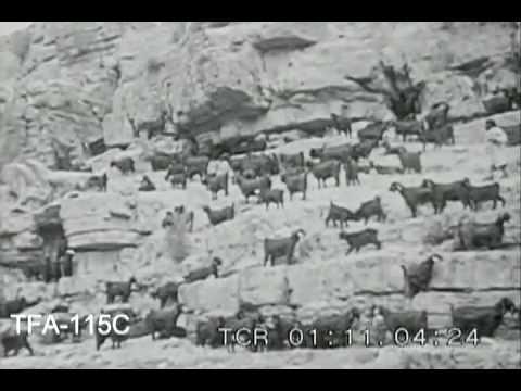 Arabia, 1930s