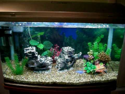 & my aquarium AQUA ONE AR 850 part 1 - YouTube azcodes.com