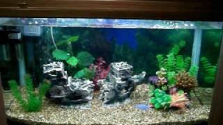 my aquarium aqua one ar 850 part 1
