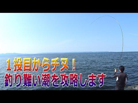 今日は難しい2枚潮を攻略してチヌを釣っていきます