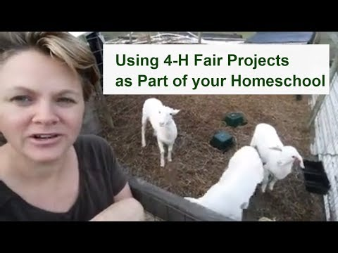 Using 4-H Fair Projects as part of your Homeschool Curriculum with Life Skills