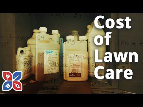 cost-of-lawn-care---lawn-maintenance-cost- -domyown.com