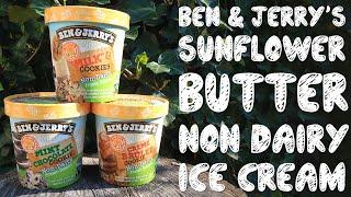 Ben & Jerry's Sunflower Butter Non Dairy Ice Cream | Taste Test & Review