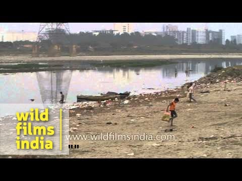 Rag picker collects garbage on the banks of River Yamuna - Delhi