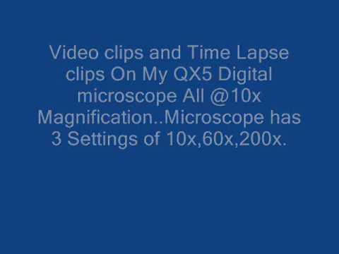 QX5 Digital Microscope